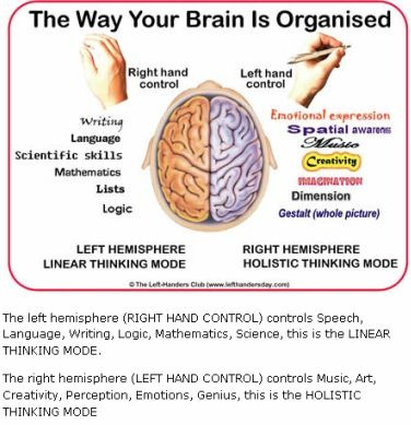 brainorganized